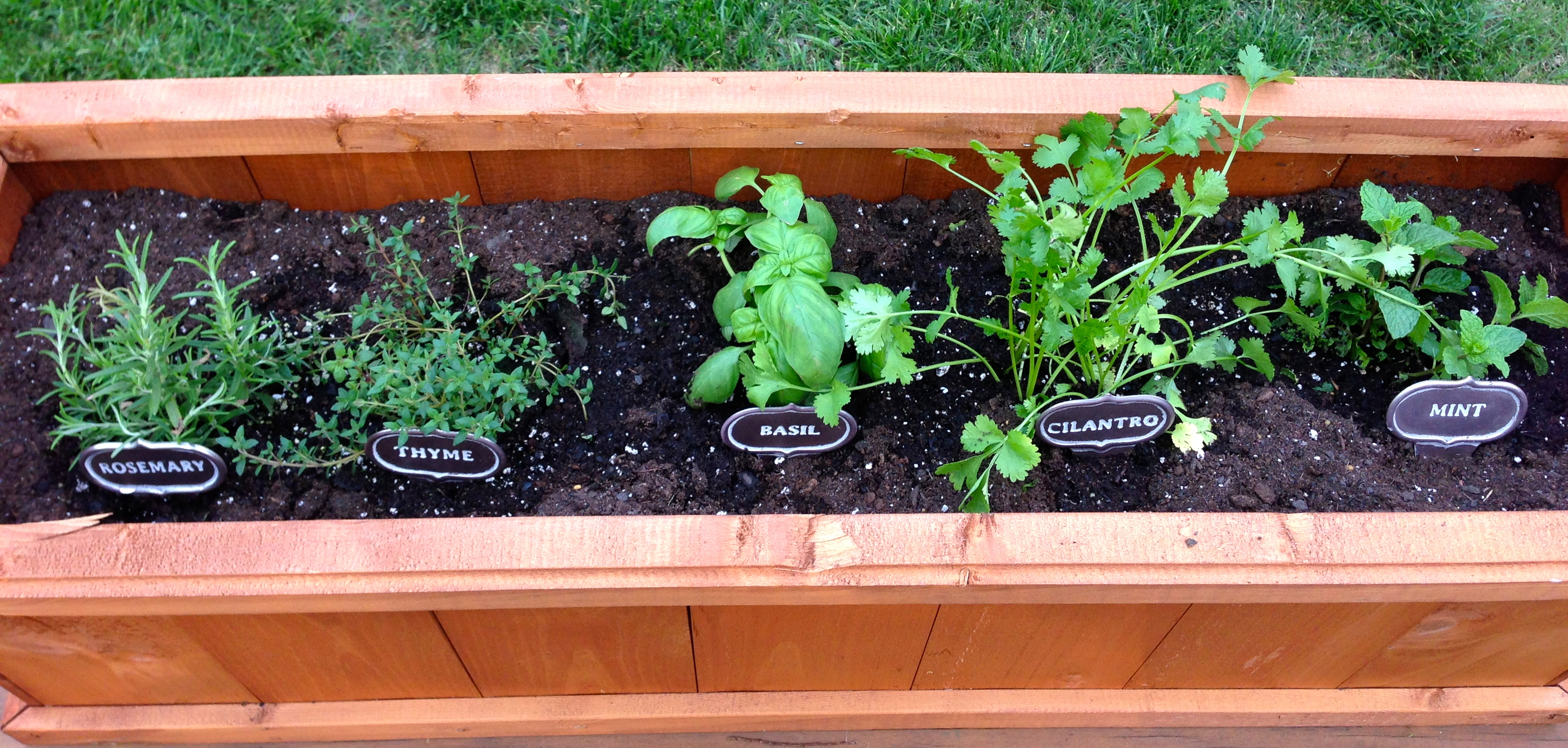 Superior Herb Box Planter Part - 7: Photo. My New Planter-box-herb-garden.