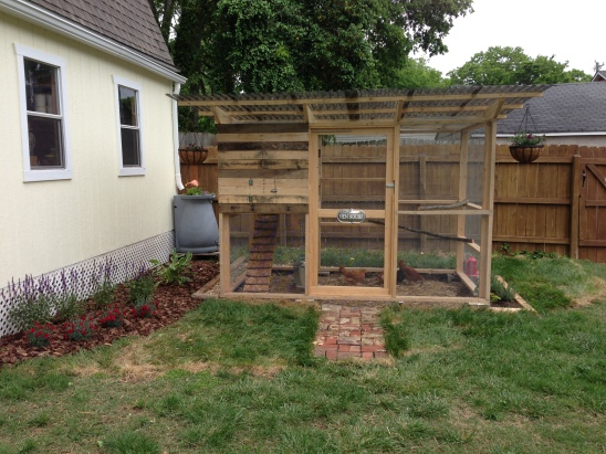 an updated shot of the coop with it's completed landscaping and rainbarrel in the background.  You can also see the gutter that Keith hung!
