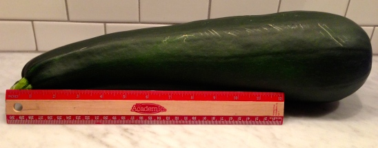 The gigantic zucchini that started it all.