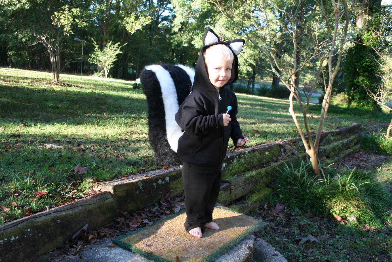 homemade skunk (fox? cat?) costume | two girls blog