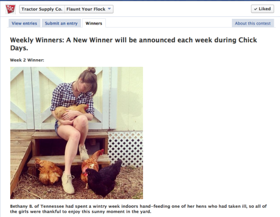 My photo as featured on the winners page!